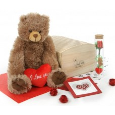 Bear with Gift Packages