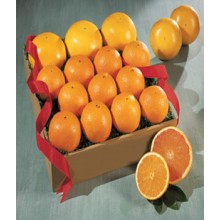 Best Navel Oranges