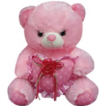 Bear with Red Ribbon on a Heart Pillow