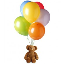 A teddy bear with 6 pcs balloons