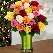 Two Dozen Christmas Lights Roses