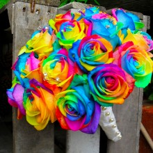 Rainbow Rose 1 Dozen
