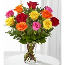 1 Dozen Assorted Roses