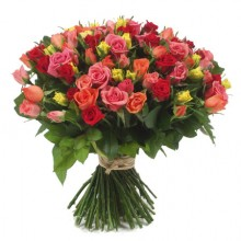 101 pcs Long Stemmed Fresh Cut Multi Colored Roses