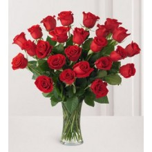24 Long Stem Premium Rose Vase