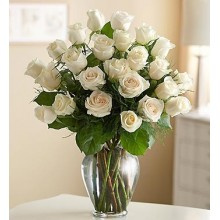 Three Dozen Premium White Roses in Vase