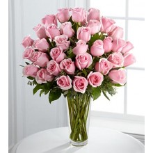 36 Soft Pink Roses