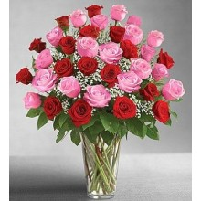 3 Dozen Long Stem Pink and Red Roses