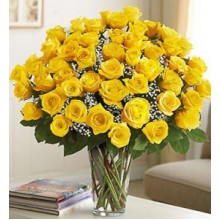 Four Dozen Premium Yellow Roses