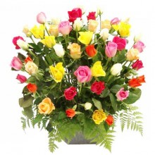 48 Assorted Roses Arrangement