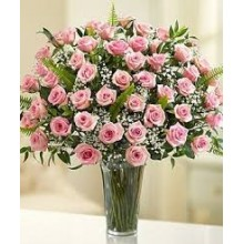 48 Long Stem Light Pink Roses