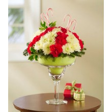 Carnations Margarita