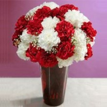 White & Red Carnations  in a vase