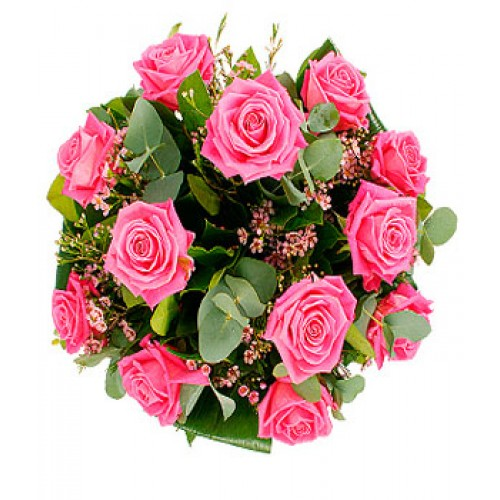 1 dozen pink roses for 12 dozen roses at your door