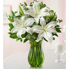All White Lily