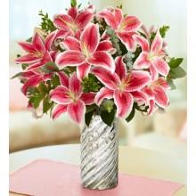 Stunning Pink Lily
