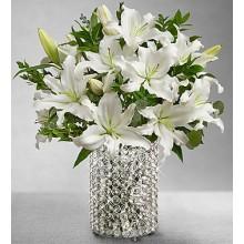 Grand Elegance Lily
