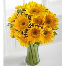 Endless Summer Sunflower -12 Stems
