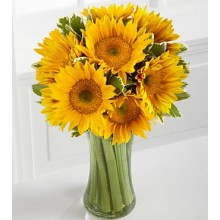 Endless Summer Sunflower -9 Stems