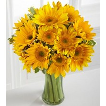 Endless Summer Sunflower -15 Stems