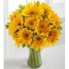 Endless Summer Sunflower -15 Stems