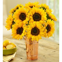 12 Stems Sunflower  Bouquet