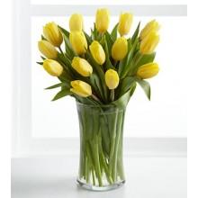 Sunshine's Promise Tulip - 12 Stems