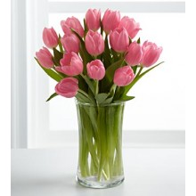 Pink Prelude Tulip Bouquet - 12 Stems