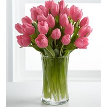 Pink Prelude Tulip Bouquet - 18 Stems