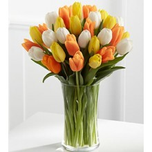 The Heat is On Summer  - 24 Stems