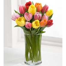 Rush of Color Assorted Tulip - 12 Stems