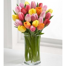 Rush of Color Assorted Tulip - 18 Stems