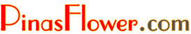 PinasFlower.com